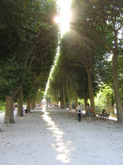 aliniament Aleea Haüy din Jardine des Plantes Paris