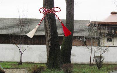 Cum să faci bani din întreținerea arborilor: metoda rapidă și neprofesională