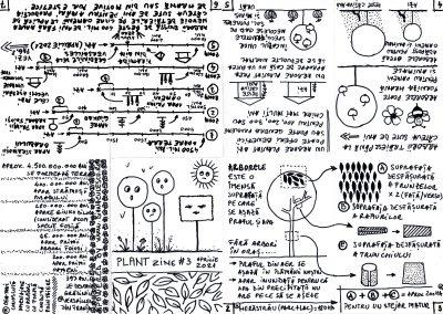 PLANTzine03_layout